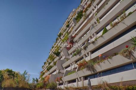 Wohnungsbau der Nachkriegsmoderne: Gartenanlage innerhalb des Olympischen Dorfes in München (© K. Link)